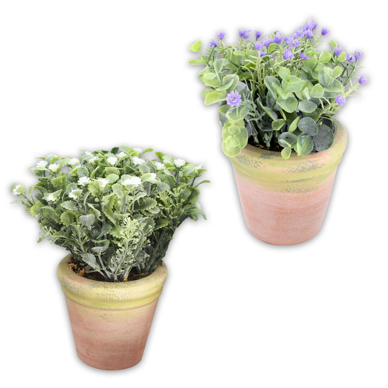 Grünpflanzen Im Topf : 12 verschiedene k nstliche gr npflanzen im terracotta topf ~ Michelbontemps.com Haus und Dekorationen