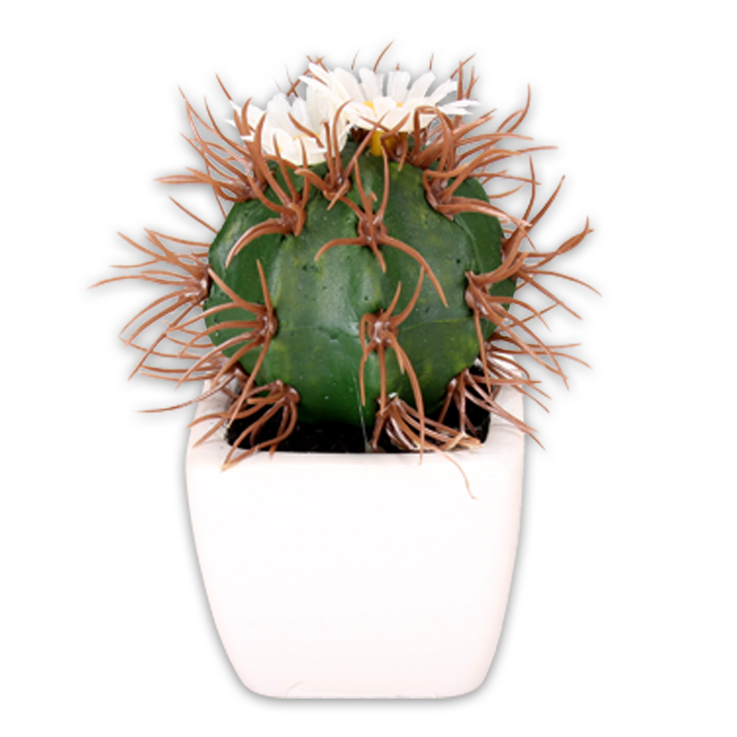 12 artificial cactus in keramik bertopf flowers deco blumen ebay. Black Bedroom Furniture Sets. Home Design Ideas